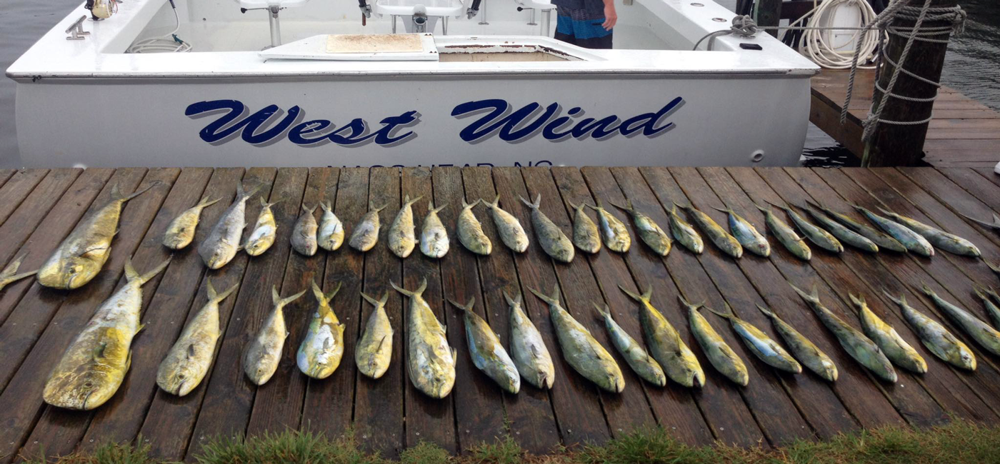 West Wind Charter Fishing, Outer Banks NC